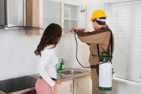 Reasons to Hire Home Pest Control Experts